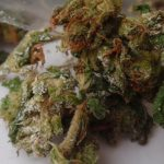 Laced Weed