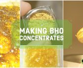 How To Make BHO (Butane Hash Oil)