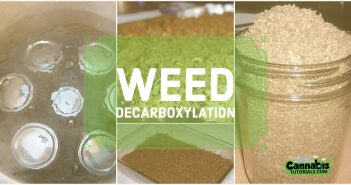 How and Why To Decarboxylate Weed - Weed Decarboxylation