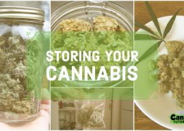 The 13 Best Weed Storage Boxes, Containers, and Jars in 2020