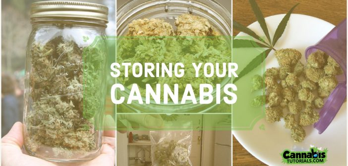 The Best Weed Storage Boxes, Containers, and Jars