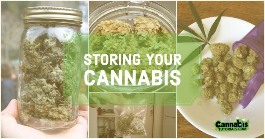 The 13 Best Weed Storage Boxes Containers and Jars