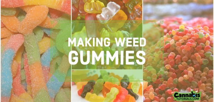 how to make weed gummies
