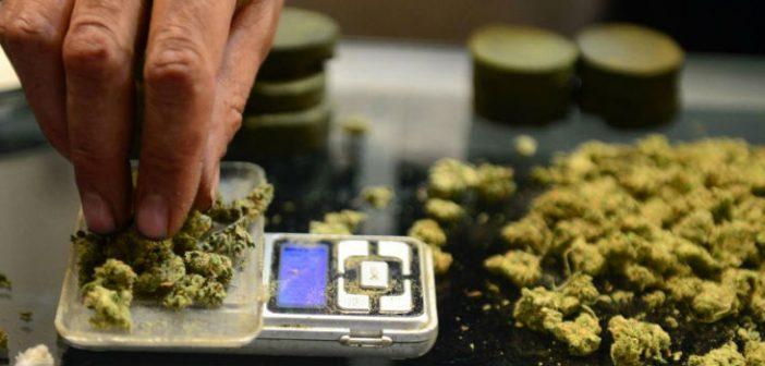 cannabis scale