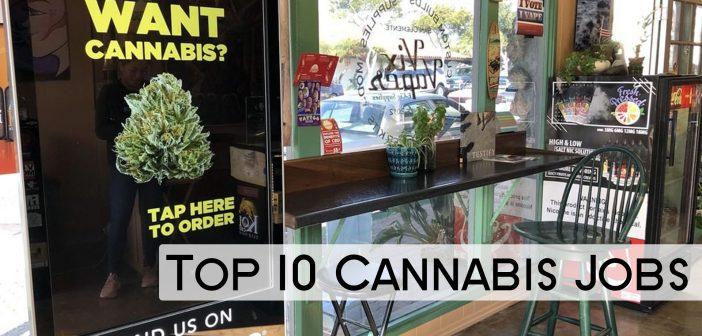 best cannabis jobs 2020