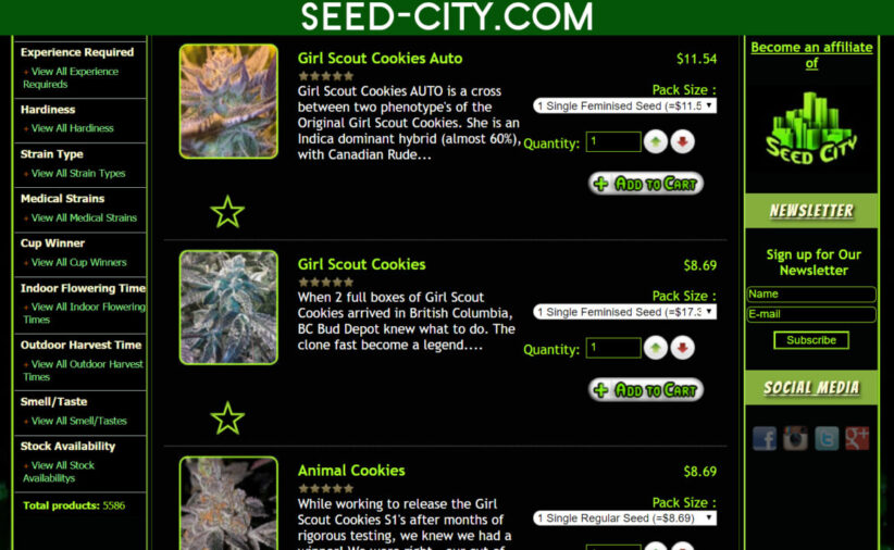 best place to buy cannabis seeds online