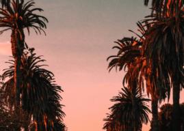 5 Best Smoking Spots in Los Angeles